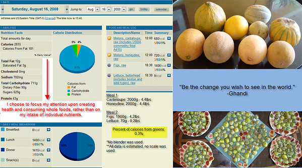 August 2008 - Food Consumption
