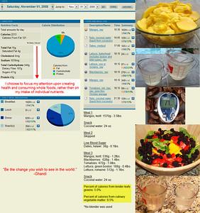 November 2008 - Food Consumption