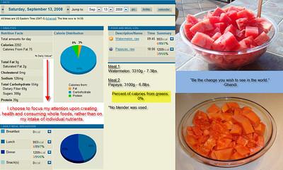 September 2008 - Food Consumption