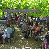 Lunch at the winery<br /> Napier, New Zealand