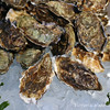 Tomales Bay Oysters 2016_4web3242