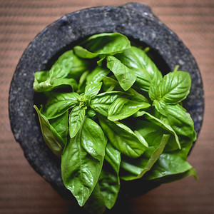Basil from the garden ready to be Pesto