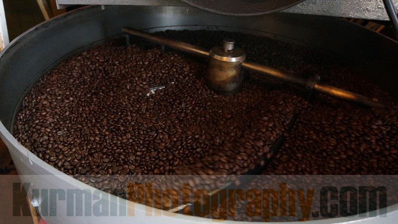 Coffee Beans Roasted and Cooling DSC00562