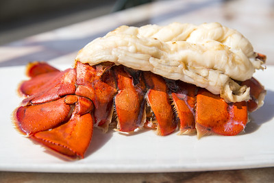 Lobster Tail at Elliott's Oyster House