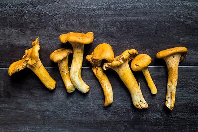 Dark rustic still life harvest of chanterelles mushrooms