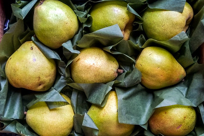 Holiday Pears at Metropolitan Market Seattle