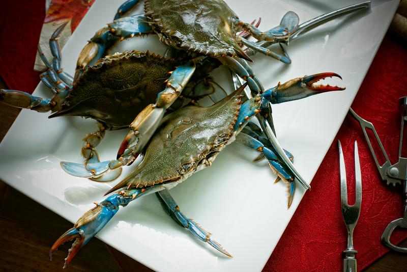 Blue Crab III