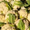 Cauliflowers, San Francisco Farmers Market