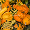 Autumn gourds and squash