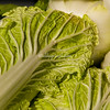 Chinese cabbage, San Francisco Farmers Market