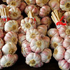 Pink Garlic Cloves