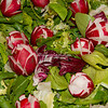 Salad with radishes and radicchio, Rome