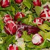 Salad with radishes and radicchio, Rome