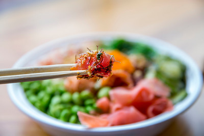 Fresh Hawaiian Ahi Tuna and Salmon Poke