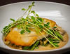 Alaskan Halibut  - Peas & Shoots, Miso Broth, Oyster Mushrooms