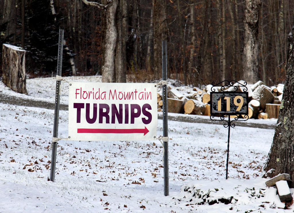 . Florida Mountain turnips are only grown on Florida Mountain. They can be purchased in Florida and at Tux Express in Pittsfield. Owner Jerrid Burdick gets the turnips he sells from a family living on the mountain. Nov. 12, 2013. Holly Pelczynski/Berkshire Eagle Staff