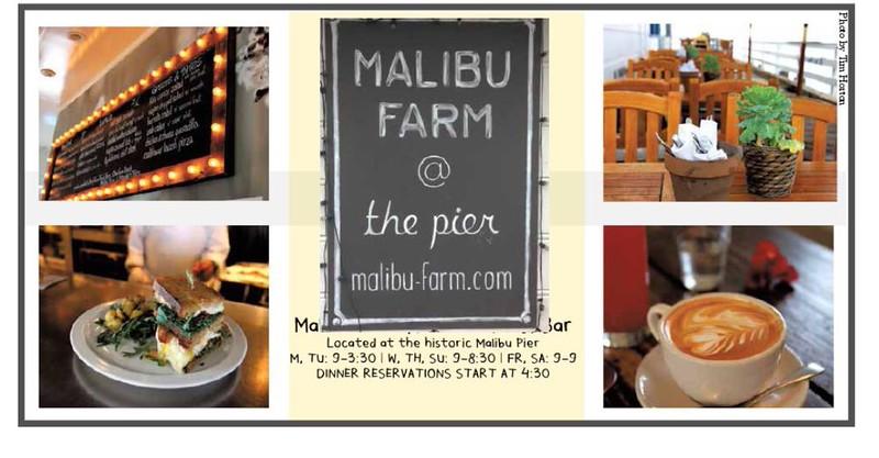 Malibu Farm paid ad