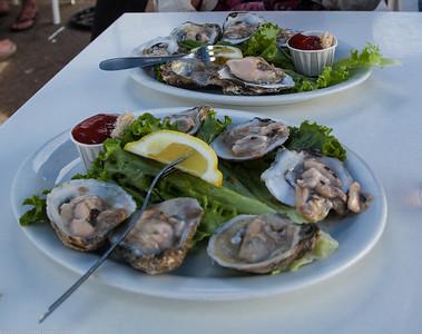 Oysters at Santa Cruz Wharf