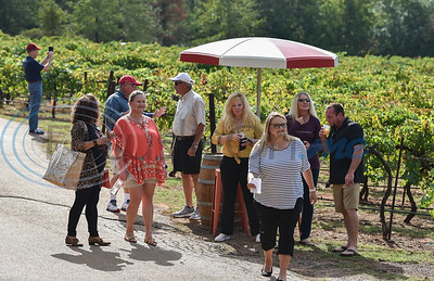People gathered at Kiepersol Winery, south of Tyler, on Saturday, October 19 for the winery's annual Vine Day on Saturday, October 19. The event included an orchestra that lulled the vines to sleep along with tours, tastings, Prayer of Thanksgiving and local vendors. (Jessica T. Payne/Tyler Morning Telegraph)