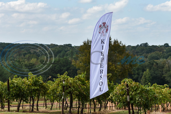 Kiepersol Winery hosted its annual Vine Day event on Saturday, October 19. The event included live music, food trucks, local vendors and a Prayer of Thanksgiving. (Jessica T. Payne/Tyler Morning Telegraph)