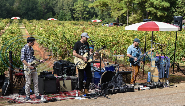 East Texas band Roadkeeper performs during Vine Day at Kiepersol Winery on Saturday, October 19.  The event included an orchestra that lulled the vines to sleep along with tours, tastings, Prayer of Thanksgiving and local vendors. (Jessica T. Payne/Tyler Morning Telegraph)