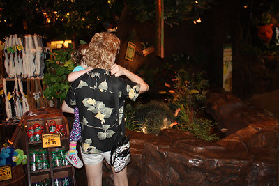 20100607 Rain Forest Cafe' - Wood field 019