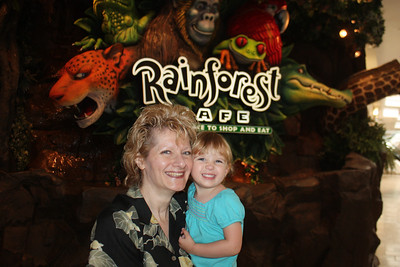 20100607 Rain Forest Cafe' - Wood field 013