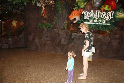 20100607 Rain Forest Cafe' - Wood field 005