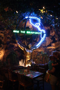 20100607 Rain Forest Cafe' - Wood field 051