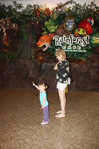 20100607 Rain Forest Cafe' - Wood field 004