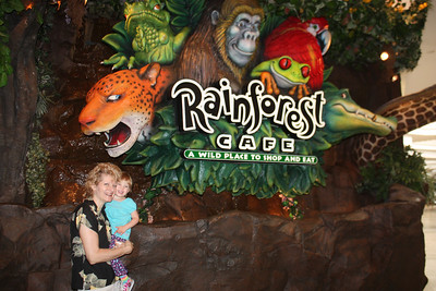 20100607 Rain Forest Cafe' - Wood field 012