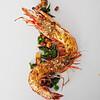 Bellota Tiger Shrimp0026