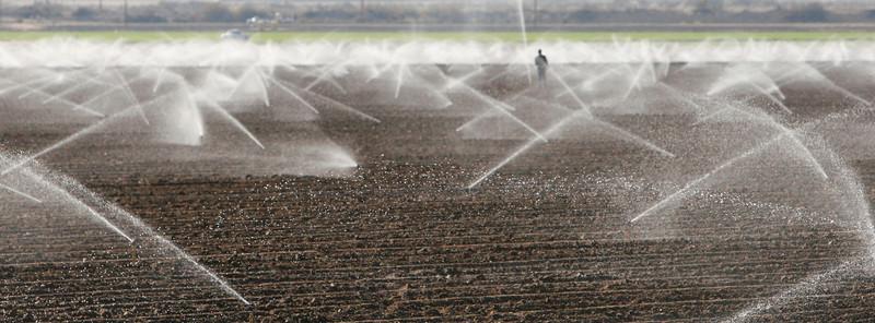 A worker adjusts sprinklers