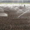 A worker adjusts sprinklers