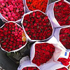The flower market is two blocks long and offers thousands of flowers daily. Here are hundreds of roses.