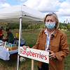 Owner Ann Harris at Autumn Hills Orchard in Groton, which currently has pick your own raspberries and apples (two varieties ready), and is harvesting peaches.  (SUN/Julia Malakie)