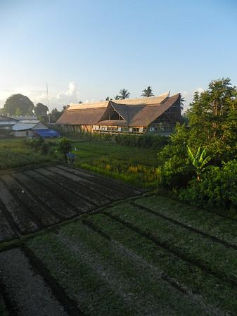 Big Tree Farms Factory
