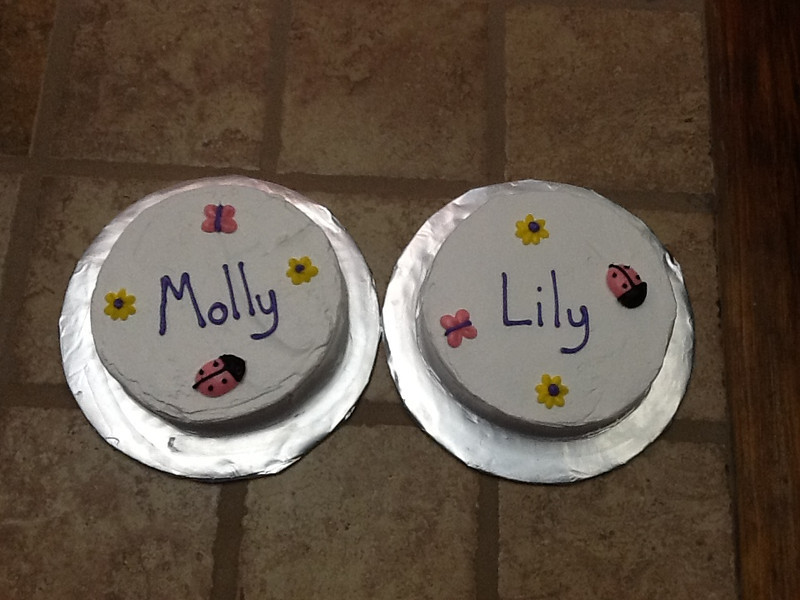 Flowers & Bugs Smash Cakes for Twins
