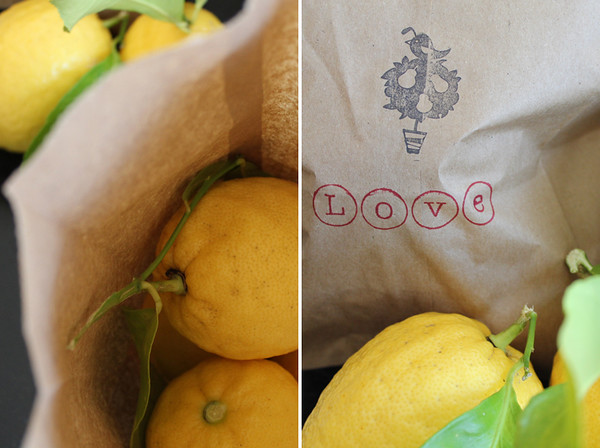 lemons 750 x 560 Collage