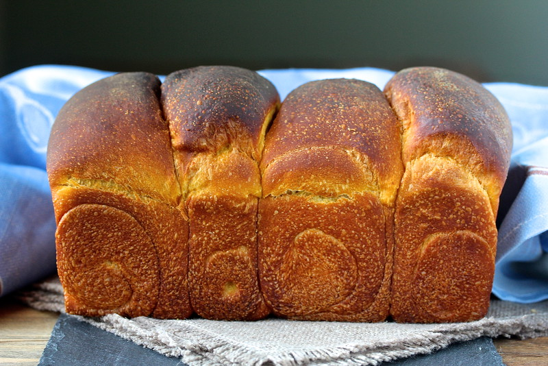 This Sourdough Pumpkin Hokkaido Milk Bread is so soft and flavorful, and perfect for breakfast toast.