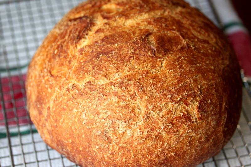 CI No Knead White