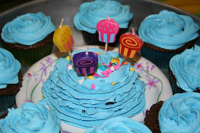 Anissa's 4th B-day Cupcakes