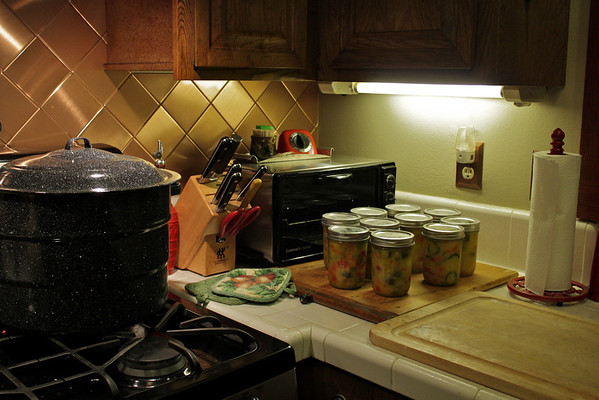 Mustard pickles, first try