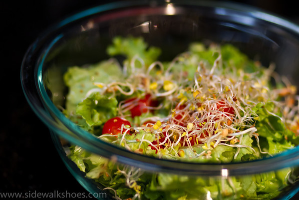 Salad sprouts you made in a jar!