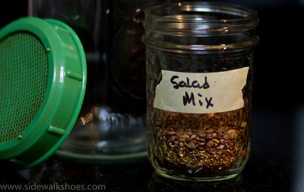 Salad mix seeds.  Ready for sprouting in a jar!