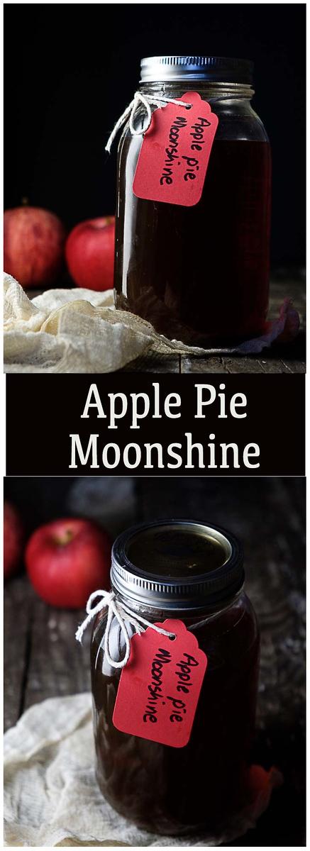 Homemade Apple Pie Moonshine - apple juice, apple cider, sugars, cinnamon and moonshine!