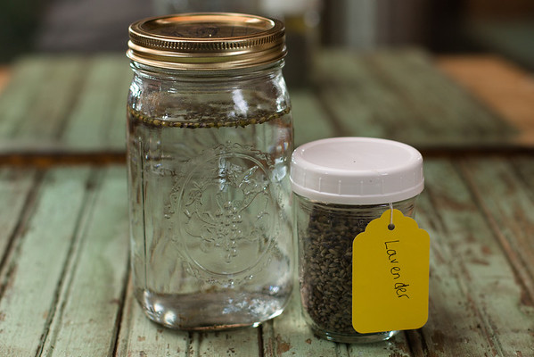 Jar of gin with lavender buds and lavender filled jar