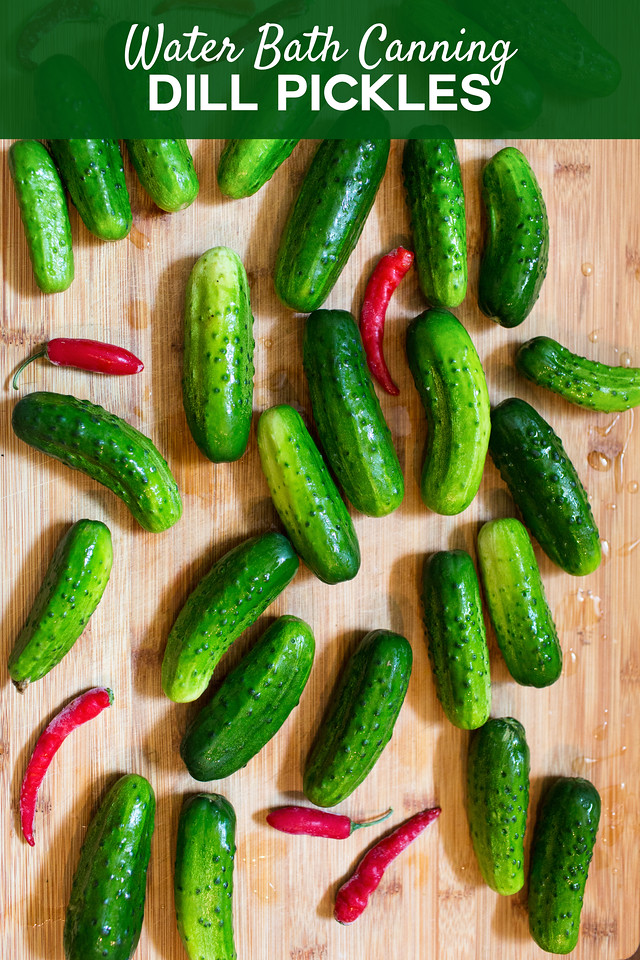 cucumbers and red peppers on a cutting board with text overlay reading Water Bath Canning Dill Pickles