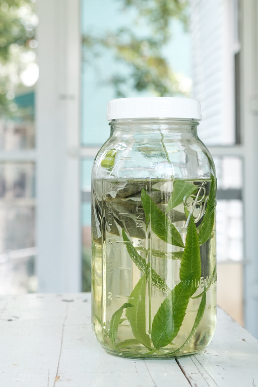 Mason jar filled with water, green tea bags and lemon verbena leaves.