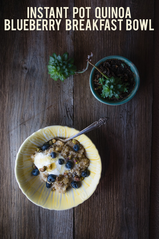 A bowl of quinoa topped with blueberries and hone, with a succulent.